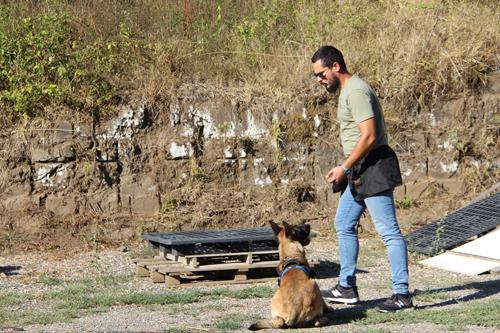 Arrivano i Security Dogs. Novità nella sicurezza privata